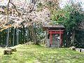 下市町才谷 稲荷神社 Inari-jinja, Saitani 2011.4.21 - panoramio.jpg