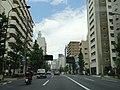 中原街道 - panoramio (1).jpg
