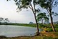 家乡的风景 - panoramio - jiang-wen-jie (2).jpg