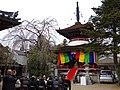 東南院にて 吉野町吉野山 Tōnan-in 2013.2.17 - panoramio.jpg