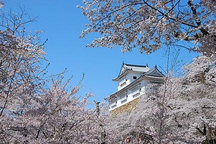 桜に囲まれた津山城、備中櫓の画像。