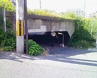 犬の散歩 - 城東貨物線の蒲生ガード (2991911382).jpg
