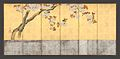 酒井抱一筆 桜図屏風-Blossoming Cherry Trees MET DP704940.jpg