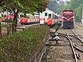 阿里山森林鐵路車庫園區 Alishan Forest Railway Garage Park - panoramio (2).jpg