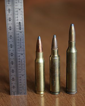 .284 Winchester with .223 Rem and .308 Win.JPG