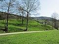 08 Fischerbach Castle.JPG