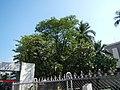09202jfManila North Cemetery Blumentrit Extension Sampaloc Manilafvf 09.JPG