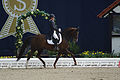 13-04-21-Horses-and-Dreams-Karin-Kosak (1 von 21).jpg