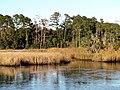 13 Bennetts Point RD Green Pond SC 6840 (12397374865).jpg