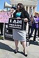 145.HealthCareReformProtests.SupremeCourt.WDC.27March2012 (8274301082).jpg