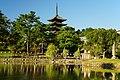 170930 Sarusawaike Nara Japan01s3.jpg