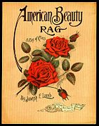 1913 American Beauty Rag.jpg