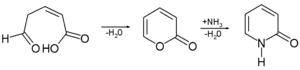 2-Pyridone - 2-Pyridone synthesis from 2-pyran