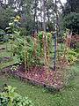 2010 community garden AtlantaGA 4898749834.jpg