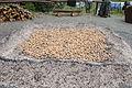 2012-09-01 Kartoffelbraten IMG 3982.jpg