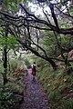 2012-10-27 13-01-38 Pentax JH (49283799271).jpg