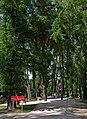 2014 Lądek-Zdrój, park zdrojowy 08.JPG