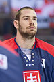 20150207 1756 Ice Hockey AUT SVK 9500.jpg