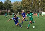 2017-09-10 Bonn-Beuel Elbernstadion SVBeuel06ggSVHeimerzheim