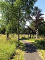 2051 Canford Cemetery path (8052125762).jpg