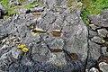 25927 Ottringsneset kvernsteinsbrudd fra RA.jpg