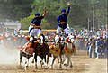 2 Singh's riding 4 horses together in holla mahalla festival punjab.jpg