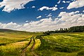 40000 Sıdıklıküçükoba-Kırşehir Merkez-Kırşehir, Turkey - panoramio.jpg