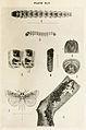 66-Indian-Insect-Life - Harold Maxwell-Lefroy - Arbela-tetraonis.jpg