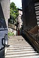 6967viki Bielsko-Biała. Foto Barbara Maliszewska.jpg