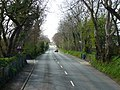A5 New Castletown Road - geograph.org.uk - 1845534.jpg