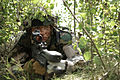 A Latvian soldier waits to conduct an ambush during a situational training exercise in Adai, Latvia, June 4, 2013, during exercise Saber Strike 2013 130604-O-ZZ999-004.jpg