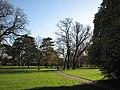 A November morning in Cherry Hinton Park - geograph.org.uk - 2710663.jpg