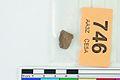 A fragment of silver pressblech foil from a helmet (FindID 554110).jpg