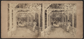 A garden scene in Morisiana (Morrisania), New York, from Robert N. Dennis collection of stereoscopic views.png