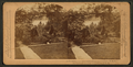 A glimpse of the Suwanee River, Georgia, by Underwood & Underwood.png