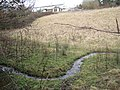 A winding channel below Moorpark - geograph.org.uk - 1724793.jpg