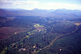 Abernethy Forest - Image: Abernethy 2