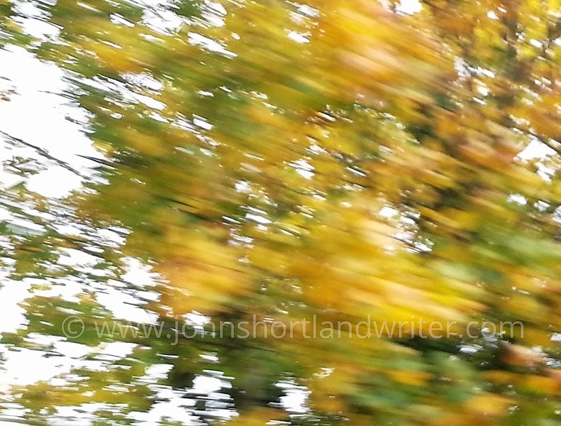 File:Abstract- Autumn II (37773468781).jpg