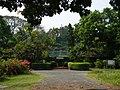 Acharya Jagadish Chandra Bose Indian Botanic Garden - Howrah 2011-03-20 2071.JPG