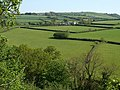 Across the Tamar valley - geograph.org.uk - 795521.jpg
