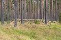 Adelöv 12-2, Vassrödjorna - KMB - 16001000260448.jpg