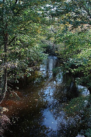 River Trothy - The River Trothy near Monmouth