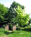 Ahornpark Ilfeld.jpg