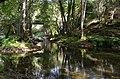 Aldeias e Margens do Rio Ovelha XXIX (35867964103).jpg