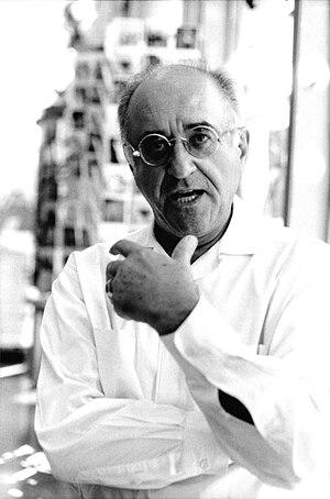 Alfred Biolek - Image: Alfred Biolek by Stuart Mentiply