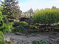 Alpine Garden (Montreal Botanical Garden) 01.jpg