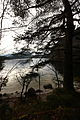 Altausseer See nordost 78987 2014-11-15.JPG