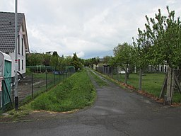 Alten-Busecker Weg in Buseck