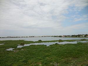 Ambattur Lake - The lake as seen during a dry season