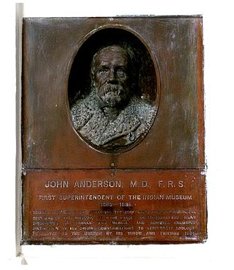 Zoological Survey of India - Bust of John Anderson at Indian Museum